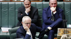 Turnbull's Nuclear Option To Handle The Citizenship Mess Before