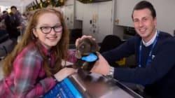 Perde il peluche a luglio, dopo 5 mesi l'aeroporto di Glasgow le fa il miglior regalo di Natale che potesse