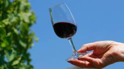 Los sabores y olores de un vino con