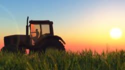 Il vero pericolo per l'agricoltura europea è non