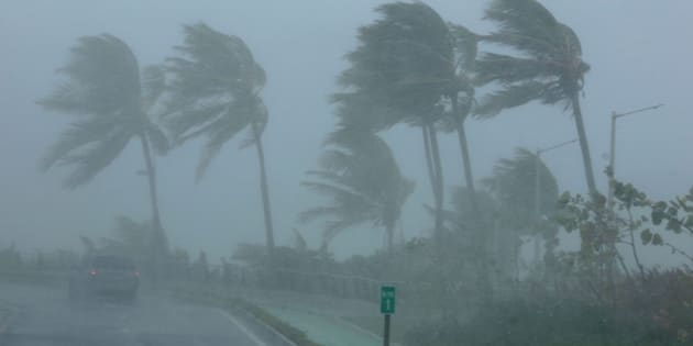 Une dizaine d'arrestations à Saint-Martin, dit Collomb — Irma