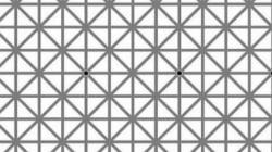 En esta imagen hay 12 puntos negros, ¿puedes verlos todos a la