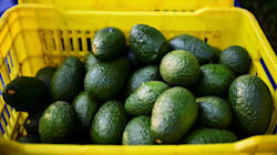 Australia's Favourite Fruit Is About To Get A Whole Lot