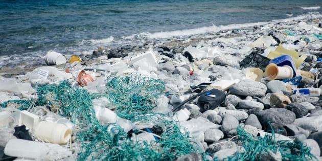 De acordo com a ONU, são necessários pelo menos 450 anos para que uma garrafa de plástico se decomponha.