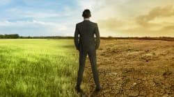 BLOG - La vie est en train de disparaître sur Terre mais, grâce à l'écologie politique, un autre avenir est