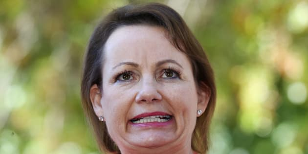 Sussan Ley has stood aside pending investigations.