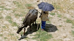 La chaleur extrême risque de rendre l'Asie du sud invivable d'ici
