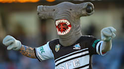 We Rank All 16 NRL Mascots By Their