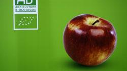 Faut-il boycotter les pommes bio du bout du monde? La question qui fâche du HuffPost à