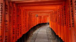 福島と京都の間で:古里の意味を問う「自主避難者」の旅(上)--寺島英弥