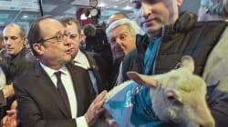 BLOG - La double tentation abstentionniste et populiste des agriculteurs pour la présidentielle est