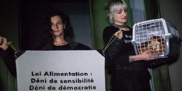 Pourquoi la loi alimentation ne risque pas de satisfaire les défenseurs des animaux (photo: action de militantes de l'association Earth Resistance en Rhône-Alpes, le 18 mai)