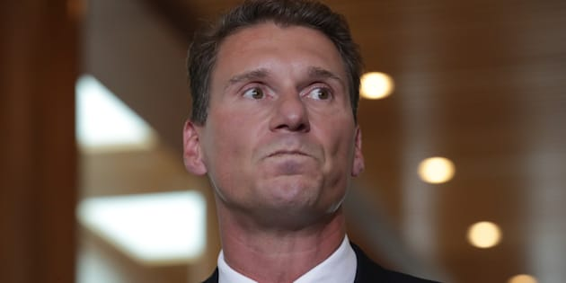 Cory Bernardi's South Australian voters overwhelmingly supported the Yes side.