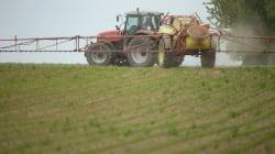 Glyphosate: l'UE, sous pression, vise une période d'utilisation