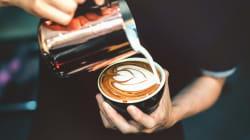A cultura dos cafés está prejudicando nossa