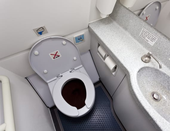Grisly reason you can't use bathroom during takeoff