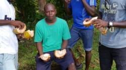Senate Committee To Investigate The Death Of Manus