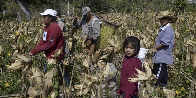 Mexico El Pais Con Mas Esclavos De America Latina Huffpost Mexico