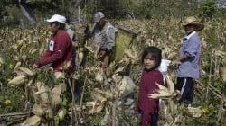 México, el país con más esclavos de América