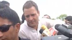Rahul Gandhi Arrested In Madhya Pradesh's