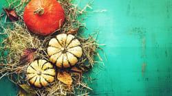 Cos'è la dieta selvatica? 3 ricette per portare a tavola erbe e radici che fanno bene alla