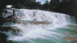#FuerzaMéxico Movió las Cascadas de Agua