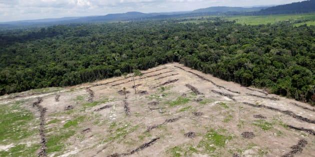 Desmatamento em área de exploração ilegal de minério no Pará.