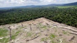Ministério suspende abertura para exploração em reserva mineral e diz que vai debater