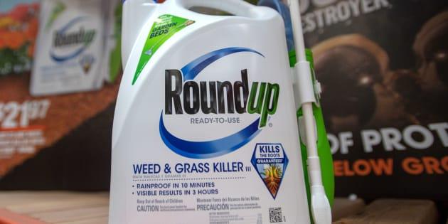 Les dommages et intérêts dus par Monsanto dans le procès du Roundup très largement réduits.