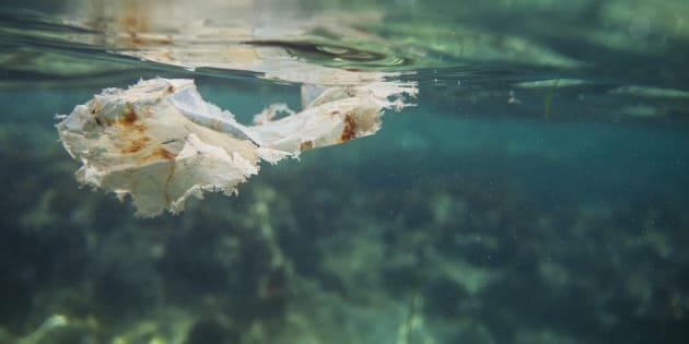 Le plastique est souvent présent à la surface, mais quand il se décompose, il tombe au fond de l'océan sous forme de petits morceaux minuscules, les microplastiques.