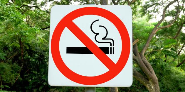 Quatre parcs non-fumeurs à Paris dès cet été