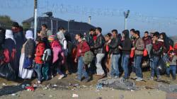 O drama que vivem os refugiados na