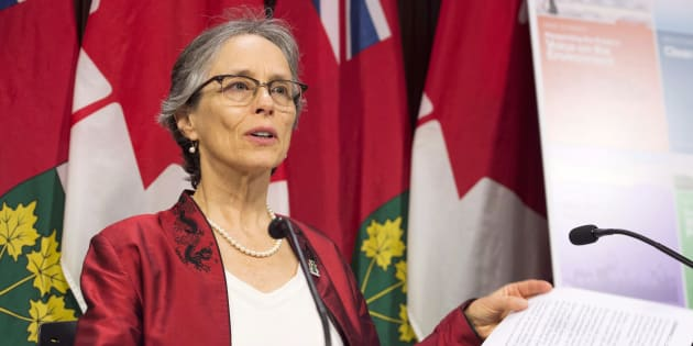 Environmental Commissioner of Ontario Dianne Saxe releases her annual report at a news conference at the Ontario legislature in Toronto on Nov. 13, 2018.