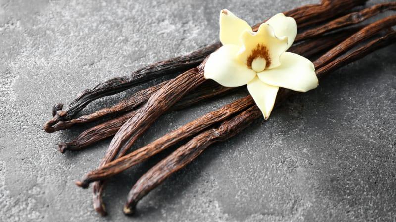Obat Sakit Gigi Berlubang dengan vanilla