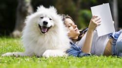Se il cane è il miglior amico dell'uomo c'è una spiegazione scientifica, e riguarda il suo