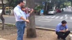 El violinista que calmó a la gente en el sismo del 16 de