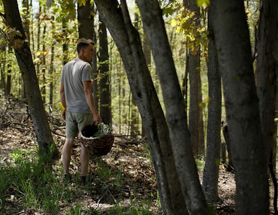 Man leads New Yorkers on food foraging journey
