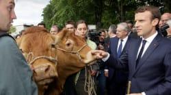 Pourquoi Macron reçoit des agriculteurs à l'Élysée malgré un précédent