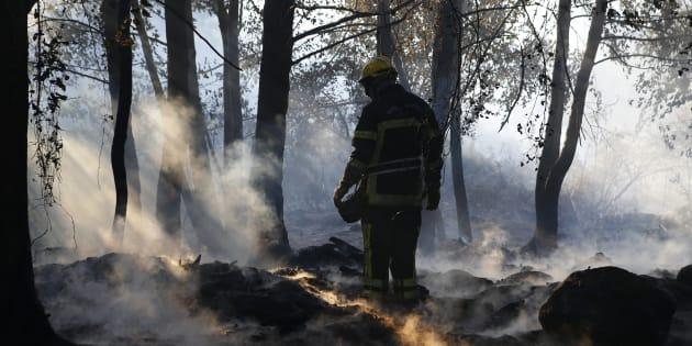 """En Haute-Corse, deux incendies """"non maîtrisés"""", et plusieurs reprises de feux"""