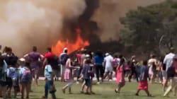 Un gros incendie dévaste les abords du célèbre signe