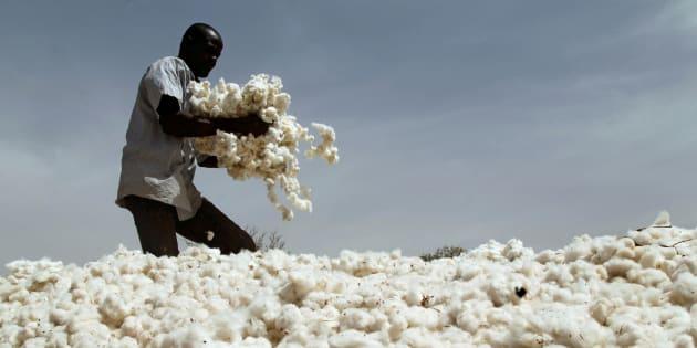 A farmer works in a cotton field in Kongolekan village near Bobo-Dioulasso, Burkina Faso March 7, 2017.