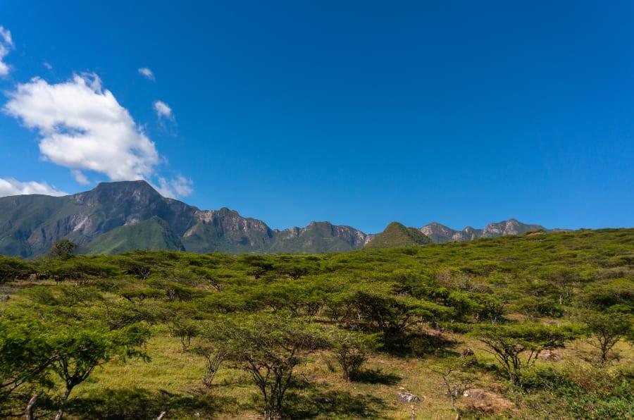 Paisaje peruano, vista de los Andes.