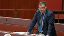 One Nation Gets Another Senator As Culleton's Replacement
