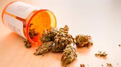 Voici le symbole qui attestera qu'il s'agit de cannabis