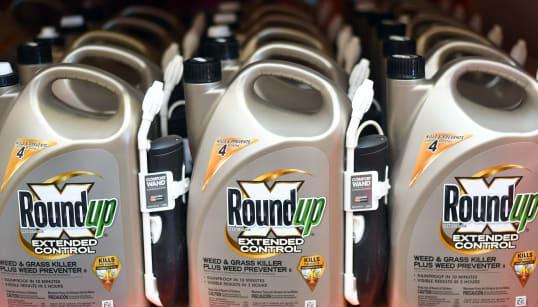 Monsanto condannata a pagare 290 milioni di dollari a un giardiniere ammalato di cancro. C'è nesso fra glifosato e