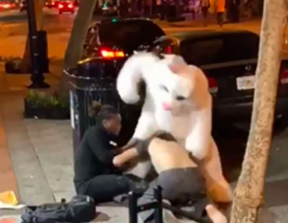 Easter Bunny hops into all-out brawl in Florida
