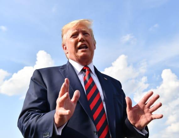 President Trump accuses Rep. Tlaib of hating Israel