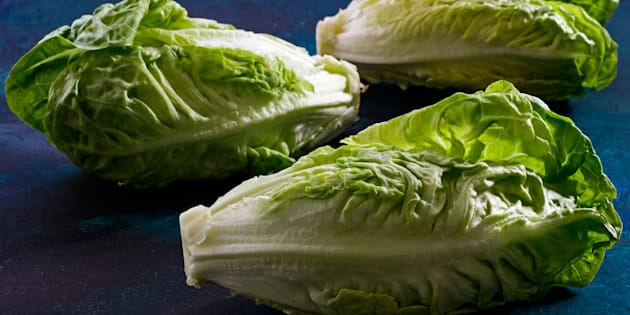 Health officials in Canada and the U.S. are telling people to avoid eating romaine lettuce because of a new E. coli outbreak.
