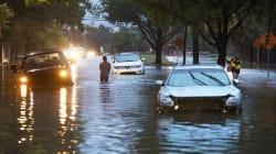 Ouragan Harvey: Trump déclare l'état d'urgence en