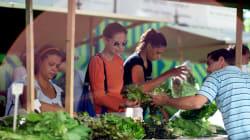 Após 'PL do Veneno', projeto que restringe venda direta de orgânicos preocupa